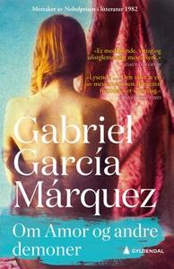 Om Amor og andre demoner (ebok) av Gabriel Ga