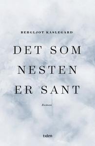 Det som nesten er sant (ebok) av Bergljot Kas