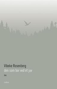 Den som bor ved et juv (ebok) av Vibeke Rosen