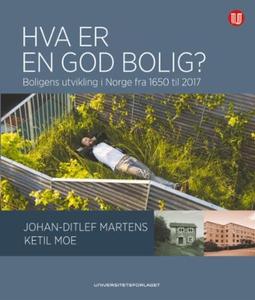 Hva er en god bolig? (ebok) av Johan-Ditlef M