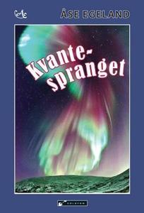 Kvantespranget (ebok) av Åse Egeland