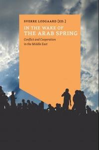 In the wake of the arab spring (ebok) av