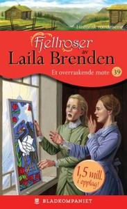 Et overraskende møte (ebok) av Laila Brenden