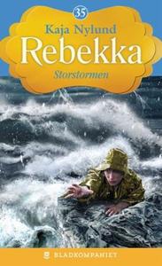 Storstormen (ebok) av Kaja Nylund
