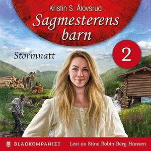 Stormnatt (lydbok) av Kristin S. Ålovsrud