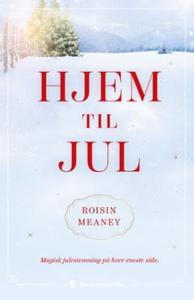 Hjem til jul (ebok) av Roisin Meaney, Meaney