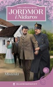 Mistenkt (ebok) av Anita Andersen Strøm