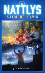 Tyveriet (ebok) av Salmund Kyvik