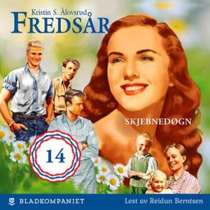 Skjebnedøgn (lydbok) av Kristin S. Ålovsrud,