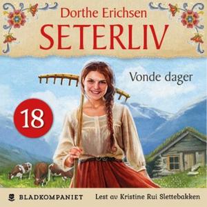 Vonde dager (lydbok) av Dorthe Erichsen