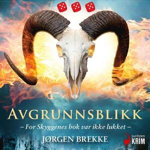 Avgrunnsblikk (lydbok) av Jørgen Brekke
