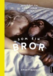 Som ein bror (lydbok) av Alfred Fidjestøl