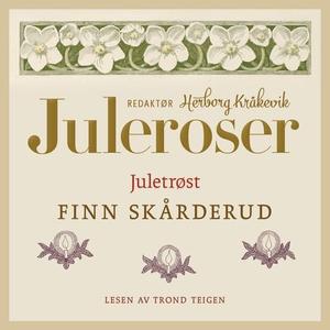 Juletrøst (lydbok) av Finn Skårderud