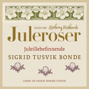 Juleillebefinnende (lydbok) av Sigrid Bonde T