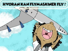 Hvordan kan flymaskiner fly?
