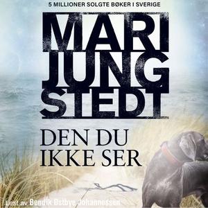 Den du ikke ser (lydbok) av Mari Jungstedt