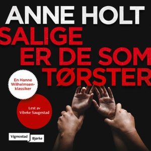 Salige er de som tørster (lydbok) av Anne Hol