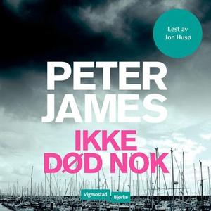Ikke død nok (lydbok) av Peter James