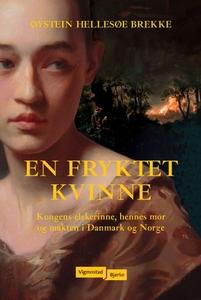 En fryktet kvinne (ebok) av Øystein Hellesøe