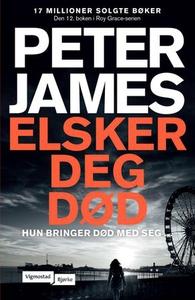 Elsker deg død (ebok) av Peter James
