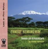 Sneen på Kilimanjaro og andre noveller
