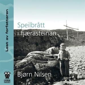 Speilbrått i fjærasteinan (lydbok) av Bjørn N