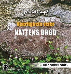 Nattens brød (lydbok) av Johan Falkberget