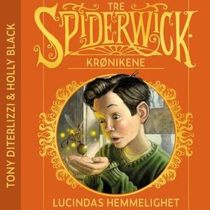 Lucindas hemmelighet (lydbok) av Tony DiTerli