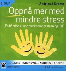 Oppnå mer med mindre stress (lydbok) av Andri