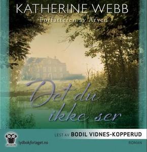 Det du ikke ser (lydbok) av Katherine Webb