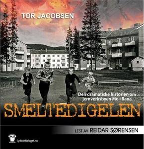 Smeltedigelen (lydbok) av Tor Jacobsen