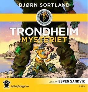 Trondheim-mysteriet (lydbok) av Bjørn Sortlan