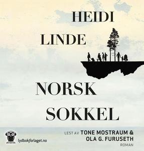 Norsk sokkel (lydbok) av Heidi Linde