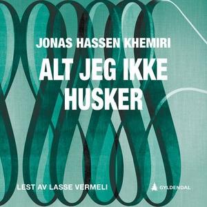 Alt jeg ikke husker (lydbok) av Jonas Hassen