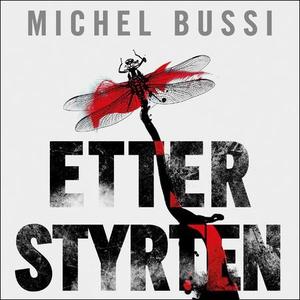 Etter styrten (lydbok) av Michel Bussi