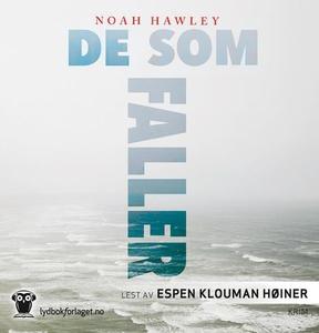 De som faller (lydbok) av Noah Hawley