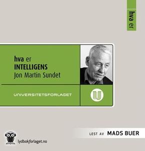 Hva er intelligens (lydbok) av Jon Martin Sun