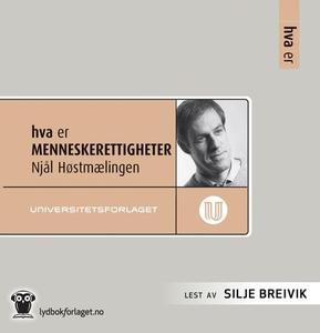 Hva er menneskerettigheter (lydbok) av Njål H
