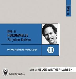 Hva er hukommelse (lydbok) av Pål Johan Karls