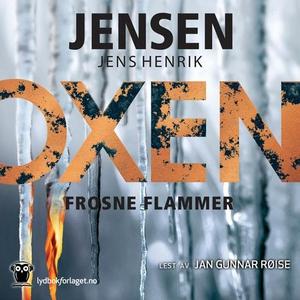 Frosne flammer (lydbok) av Jens Henrik Jensen