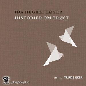 Historier om trøst (lydbok) av Høyer Ida Hega
