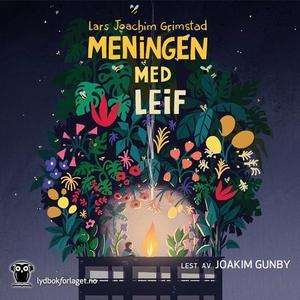 Meningen med Leif (lydbok) av Lars Joachim Gr