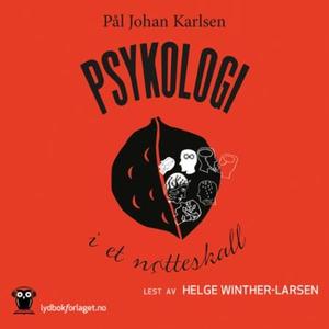 Psykologi i et nøtteskall (lydbok) av Pål Joh
