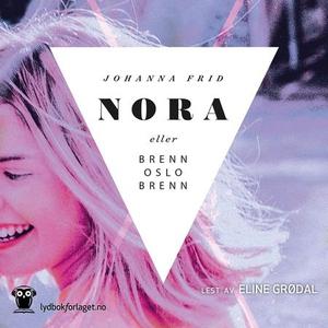 Nora eller Brenn Oslo brenn (lydbok) av Johan