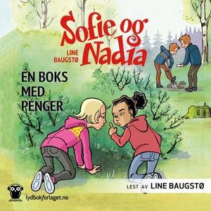 En boks med penger (lydbok) av Line Baugstø