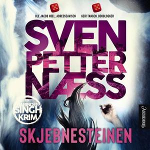 Skjebnesteinen (lydbok) av Sven Petter Næss