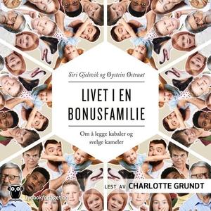 Livet i en bonusfamilie (lydbok) av Siri Gjel