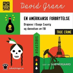 En amerikansk forbrytelse (lydbok) av David G