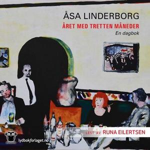 Året med 13 måneder (lydbok) av Åsa Linderbor