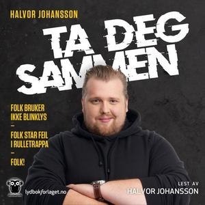 Ta deg sammen (lydbok) av Halvor Johansson